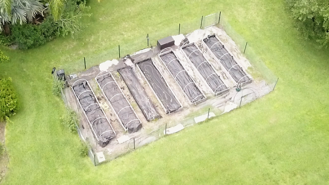 droneviewofthegarden