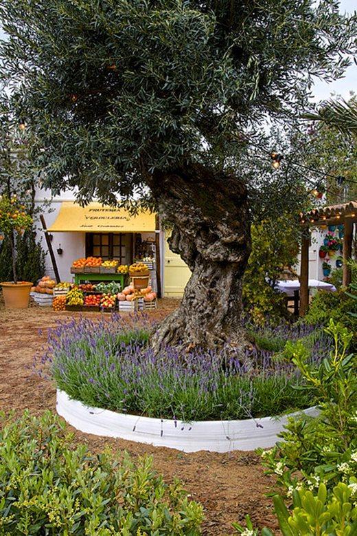 olive-at-malvern