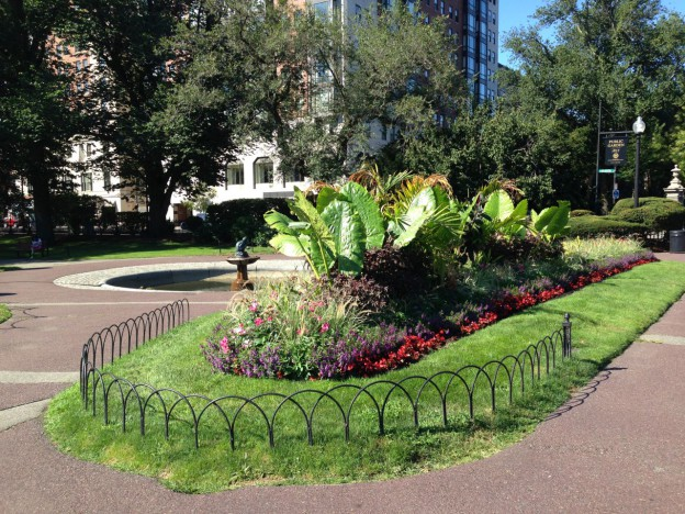 public garden-2-624x468