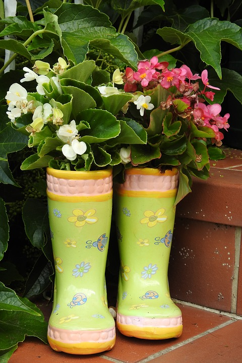 rubber-boots-3526830_960_720