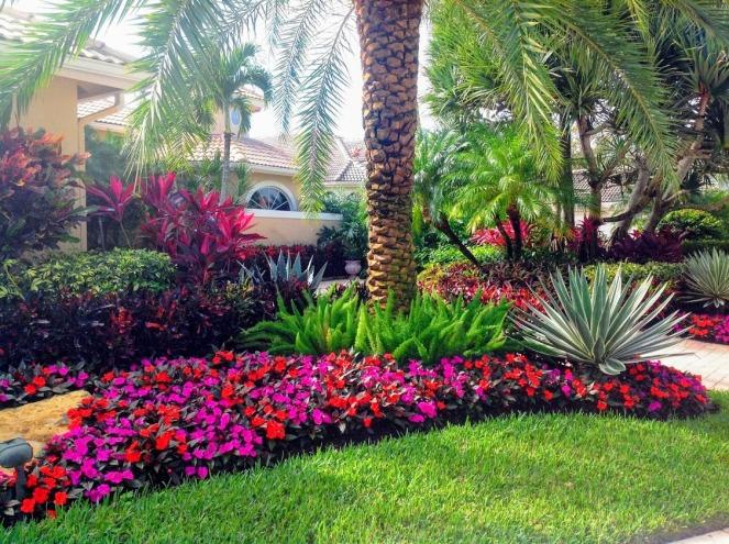 palmwithflowers