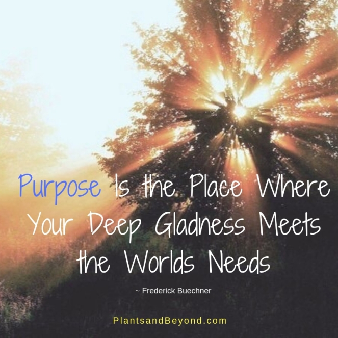 Purpose Is the Place Where Your Deep Gladness Meets the Worlds Needs (1)