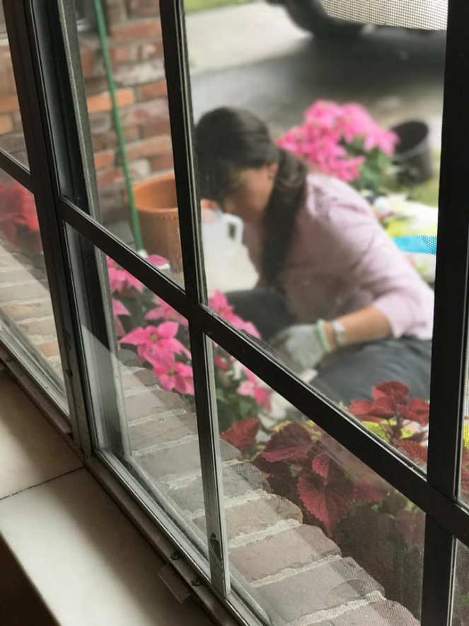 megardeningthroughwindow