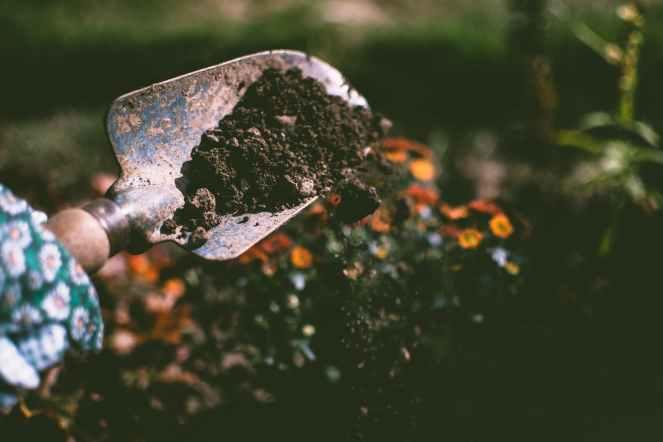 soiltest