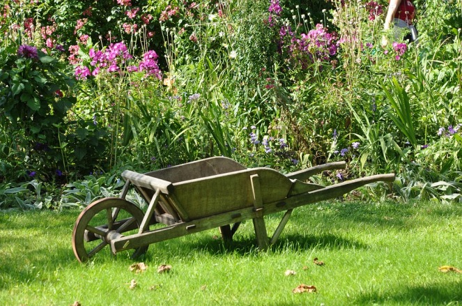 wheelbarrow-1232408_960_720