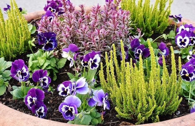 planting-2921805_960_720